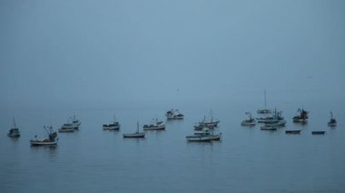 Fishing boats in the ocean — Stock Video