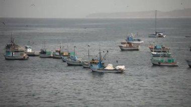 Fishing Boats — Stockvideo
