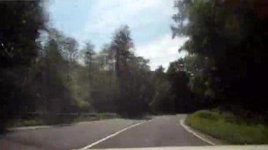 Conducción en bosque — Vídeo de stock