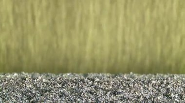 Conveyor with sand — Vídeo Stock