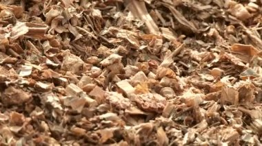 Corn at the biogas plant — Stock Video