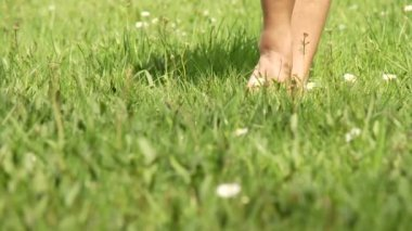 Woman walking in grass — Stock Video