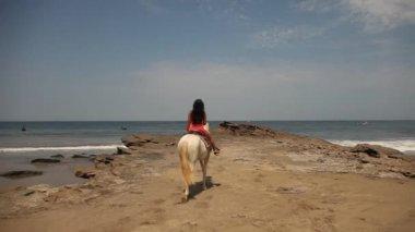 Woman riding a horse — Stock Video