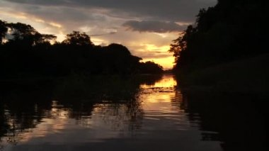 Canoe trip on the Amazon river — Stock Video