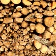 Large pile of firewood — Stock Video