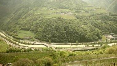 Vine growing in south Tyrol — Stock Video