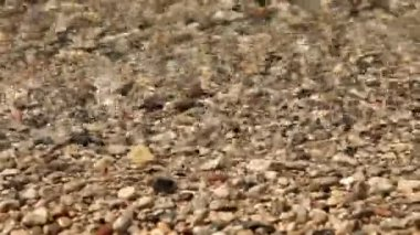 Water tides over pebble stones — Stock Video