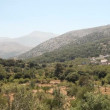 Video Stock: Lasithi Plateau in Crete