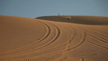 Sand dunes — Stock Video