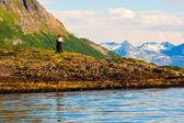 在挪威的灯塔 — 图库照片