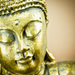 Buddha — Stock Photo #30756877