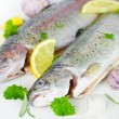 Fresh trout — Foto de stock #38197127