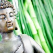 Buddha — Stock Photo #38202397