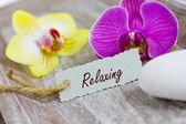 Relaxing — Stock Photo