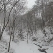 Snowy KoreMountains — Stock Video #41591885