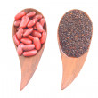 Red Kidney Bean and black sesame — Stock Photo