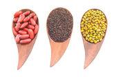Various Lentils Beans — Stock Photo