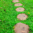Stone path in green grass garden texture — Stock Photo #32413269