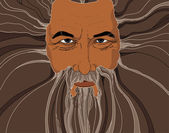 An old wise man with penetrating glance — Vector de stock