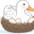 Duck on nest — Stock Vector #34388049