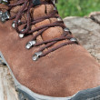 Stock Photo: Trekking shoes
