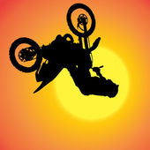 Vector silhouette of extreme jumps. — Stock Vector