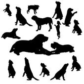 Vector silhouette of a dog. — Stock vektor