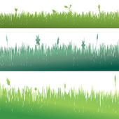 Grass background — Vettoriale Stock