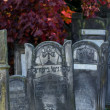 Stockfoto: Old cemetery