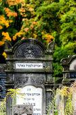ウッチの旧ユダヤ人墓地 — ストック写真