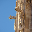 Details of the Duomo di Milano in Milan, Italy — Stock Photo