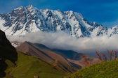 Mountain scene — Stock Photo