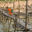 Stock Photo: Monks on wooden Bridge - Luang Prabang, Laos