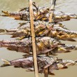 Fish Skewers on Mekong River - Laos Style — Stock Photo