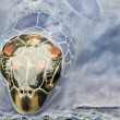 Head of a Turtle coming out from the Water Surface — Stock Photo