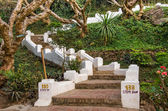 Stairs to Mount Phou Si - Luang Prabang, Laos — Stock Photo