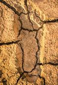 Human Footprint on a cracked Earth Soil — Stock Photo