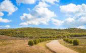 Strada di paese vecchio in Toscana — Foto Stock