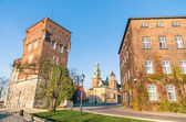 The Gothic Wawel Castle in Kraków — Stock Photo