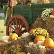 Antique Wagon Fall Pumpkin Display — Stock Photo