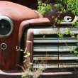 Old Vintage Red Truck In Junkyard — Stock Photo #37396743