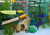 Knives are swimming in an aquarium — Stock fotografie