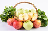 Guava and Asiatic in the basket on white background — Stock Photo