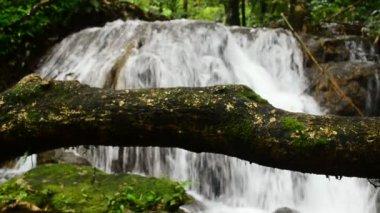 Wodospad głębokiego lasu — Wideo stockowe