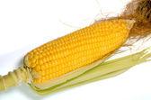 新鲜玉米棒子 — 图库照片