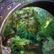 Japanese Tea Garden Pond and Bridge — Stock Photo