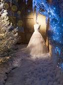 Visualizzazione di inverno dell'abito da sposa — Foto Stock