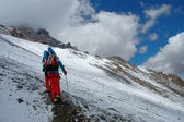Hikers on their way to Aconcagua Mountain — Stock Photo