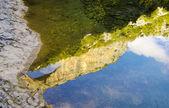 Sierra de Guara National Park, Spain — ストック写真