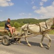 Farmer riding a cart — Stock Photo #37660157